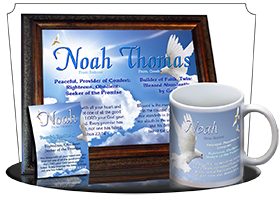 PL-AN13, Name Meaning Print,  Framed, Bible Verse noah dove peace