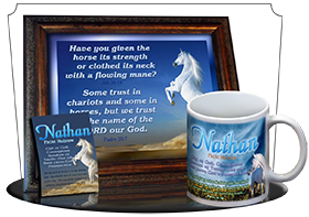SG-PL-AN26, Custom Scripture Plaque,  Framed, Bible Verse  white horse, Psalm 20:7, Job 39:19