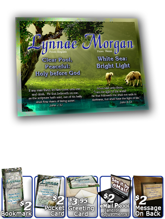 8x10-AN01, personalized 10x12 name meaning print, framed with  Lynnae Morgan name meaning & Bible verse,  sheep flock lambs shepherd lynnae  A flock of sheep are peacefully grazing across these grassy hills, as the sapphire blue sky looks on at this scene