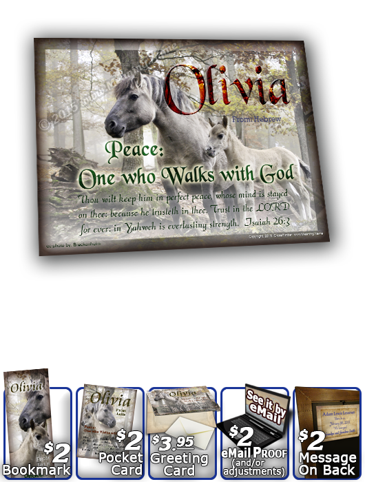 8x10-AN45, personalized 10x12 name meaning print, framed with  name meaning & Bible verse,  mom mother child horses white olivia  Magic enshrouds this enchanted forest, and this dapple grey and her young one, are no strangers to the whimsical antics of th