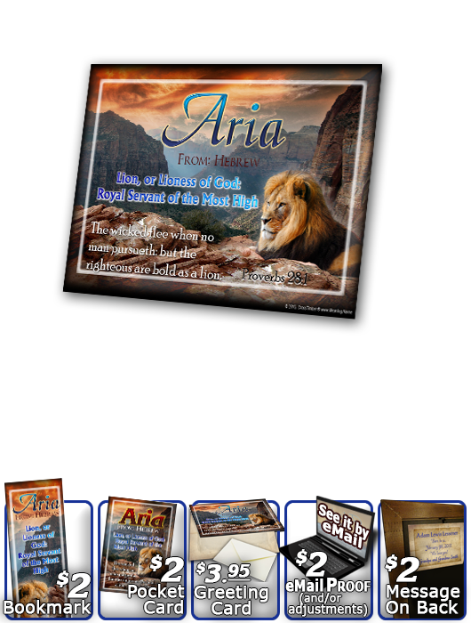 PL-AN09, Name Meaning Print,  Framed, Bible Verse, aria, lion, canyon, bravery, courage