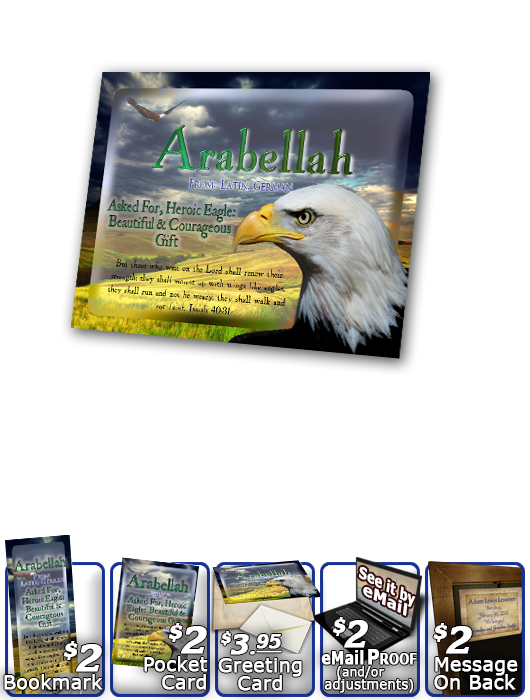 PL-AN23, Name Meaning Print,  Framed, Bible Verse bird arabellah bald eagle