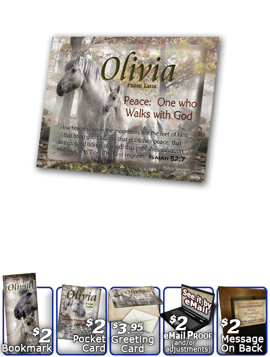 PL-AN45, Name Meaning Print,  Framed, Bible Verse mom mother child horses white olivia