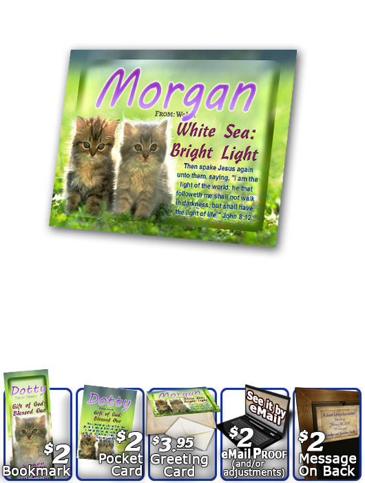 PL-AN50, Name Meaning Print,  Framed, Bible Verse morgan cute fuzzy kittens cats
