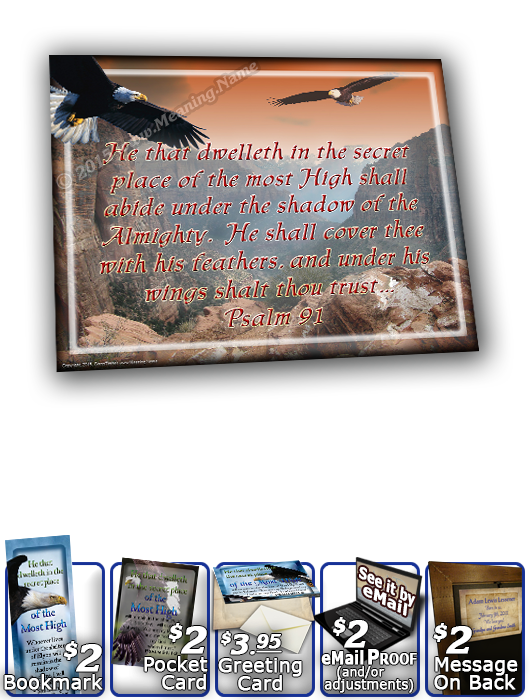 SG-8x10-AN20, Large 10x12 Plaque with Custom Bible Verse  bald eagle fly, Psalm 91, wings of eagles.