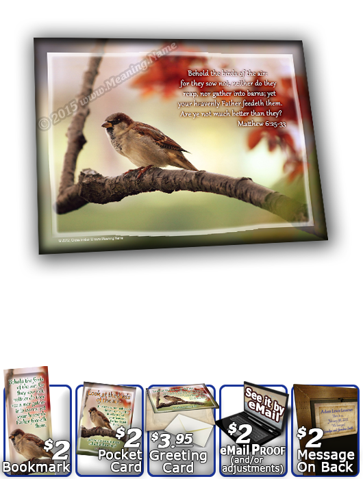SG-8x10-AN63, Large 10x12 Plaque with Custom Bible Verse  bird birds sparrow, Matthew 6:25-33
