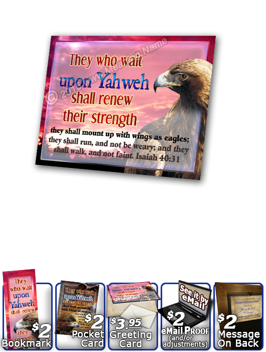 SG-PL-AN24, Custom Scripture Plaque,  Framed, Bible Verse bird golden eagle hawk, Isaiah 40:31